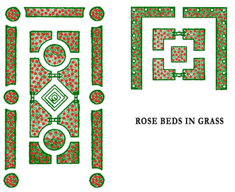Rose Garden Designs Rose Bushes