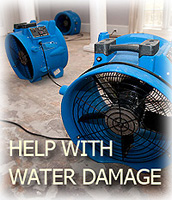 What to Look For in a Water Damage Service