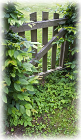 Garden Gate Design on Iron Fence Designs   Wrought Iron Fence Designs